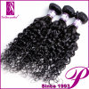 Popular Products Curly Virgin 100 Human Hair Extensions