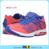 Blt Hot Sale Athletic Samples Shoe for Women