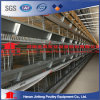 H Type Hot Galvanized Automatic Layer Chicken Cage Equipment