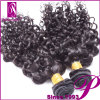 Raw Virgin Indian Curly Human Hair Extensions