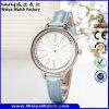 OEM/ODM Classic Casual Quartz Ladies Wrist Watch (Wy-043B)