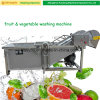 Multi-Functional Stainless Steel Vegetable Fruit Washing Washer Machine