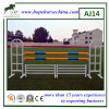 Equestrian Products for Show Jumping