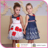 Summer Flower Appliqued Girl Dress Children Casual Daily Dresses