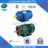 Low Cost Mini Electric Motor 3 Phase (Y90L-2)