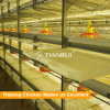 Tianrui fully automatic H type broiler farm equipment for sale