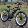 Electric Dirt Bike Lithium Battery Inside The Frame with Ce En15194