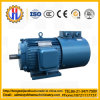 China Tower Crane Part Synchronous Motor for Crane