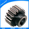 Steels Spur Gear with Key Way for Robots