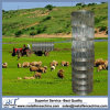 Cheap Price Grassland Fence for Sheep