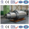 China Xingtai Mill Roll Most Popular Cast Iron Roll Sgp Roll