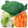High Quality 3 Mix IQF Frozen Mixed Vegetable