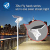 30W All in One Solar Products Street Lamp Garden Light LED Lighting for Remote Area
