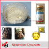 98% Purity Anabolic Powrder Nandrolone Decanoate/Deca Steroid