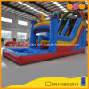 Water Park Games Rainbow Inflatable Water Slide with Pool (AQ10133)