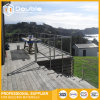 Stainless Steel Railing/Balustrade for Balcony or Courtyard