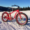 2017 Hot 26inch*4.0 Fat Tire Snow Electric Bike