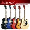 Linder Top Back&Side Acoustic Guitar (AG4010CEQ)