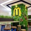 Decorative Artificial Green Grass Wall