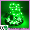 LED Holiday Lamp (GM-5050URGB30)