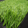 Artificial Grass, Football Grass, Synthetic Grass, Carpet Grass (PD/SE55F9)