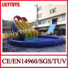 Lilytoy Inflatable Water Slide with Big Pool