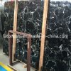 Natural Black Flower Marble Slab for Backplash, Countertop, Paving, Tombstone