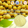 Nutritional Supplement Soybean Extract 40% Soy Isoflavone