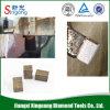 Diamond Segments for India Hard Granite Stone
