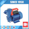 1 Inch STP65 Series Cast Iron Water Pump