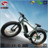 Alloy Frame Fat Tire Electric Beach Bicycle with Suspension