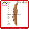 Basswood Ganoderma Lucidum Slice Factory Sell