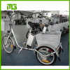 24inch 16inch Wheel 250W Electric Tricycle Cargo Bike with Two Baskets