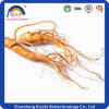 Chinese Herbs Ginseng Extract Powder