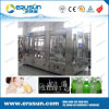 Fruit Juice with Fruit Meat Beverage Filling Machine