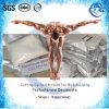 Test Decanoate Steroid Hormone Powder Testosterone Decanoate