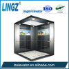 Villa Elevator with Etching Serials One