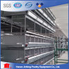 High Quality H Style Galvanized Poultry Chicken Cage