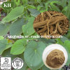 Natural Kavalactone Herbal Extract 70% / Kava Kava Extract Kavalactones