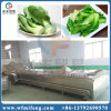Vegetable Washer Blancher Processing Machine