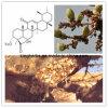 Boswellia Serrata Extract Boswellic Acid 65%
