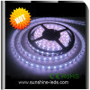 Pure White SMD 5050 3528 335 LED Flexible Light Strips