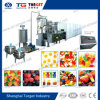 Double Colour Gummies Candy Making Machine for Sale