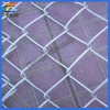 Galvanized Decorative Playground Chain Link Wire Mesh