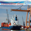 Sea Shipping / Transportation / Logistics Service to South America