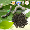 for Migrainehigh Quality Herbal Medicine Silkworm Faeces