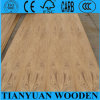 Natural Teak Veneer Commercial Plywood From China Factory