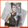 High Quality PVC Flex Banner Solvent Inkjet Media/Mesh (1099)