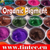 High Performance Organic Pigment Red 254 for Plastic