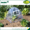 Onlylife Transparent PVC Mini Greenhouse with Zip Open Window